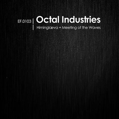 Octal-Industries-Meeting-Of-The-Waves-2013